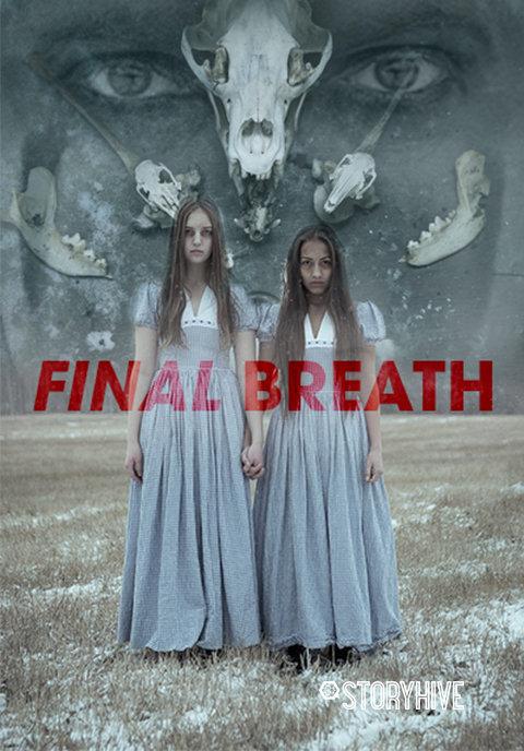 Final Breath Box Art image